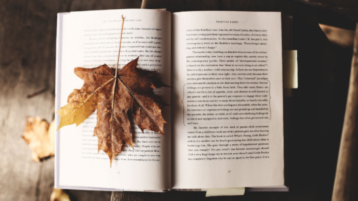 15 Christian Fiction Novels to Add to Your Fall Reading List